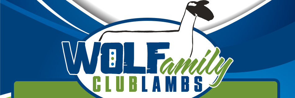 Wolf Family Club Lambs